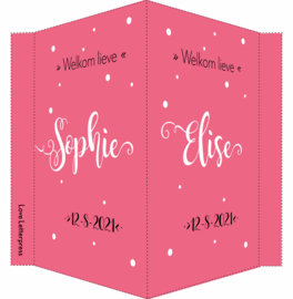 Geboortebord/ raambord | handlettering | dochters | donker roze vanaf