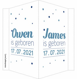 Geboortebord/ raambord | Tweeling | confetti | zoons | blauw vanaf