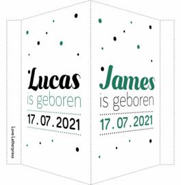 Geboortebord/ raambord | Tweeling | confetti | zoons | groen/zwart vanaf