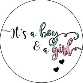 Geboorte sluitzegels | Tweeling | It's a boy & girl | blauw/roze