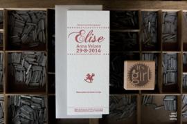 Geboortekaartje | letterpress  | 8 x 20 cm | 1 kleur  | 'Vintage hobbelpaard Elise' vanaf
