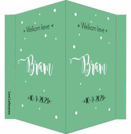 Geboortebord/ raambord | handlettering | zoon | groen vanaf