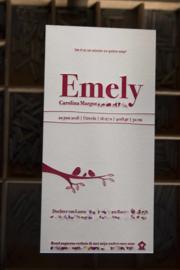 Geboortekaartje | letterpress  | 10 x 20 cm | 1 kleur | 'Vogels Emely' vanaf