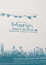 Geboortekaartje | letterpress  | 10 x 15 cm | 1 kleur | 'Waslijn It's a boy ' vanaf