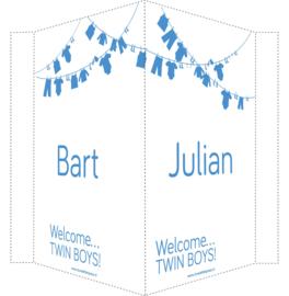 Geboortebord/ raambord | Tweeling waslijn jongens| naam | blauw vanaf