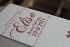 Geboortekaartje   letterpress    8 x 20 cm   1 kleur    'Vintage hobbelpaard Elise' vanaf