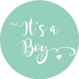 Geboorte sluitzegels | It's a boy | mint
