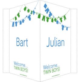 Geboortebord/ raambord | Tweeling waslijn jongens| naam | blauw/groen vanaf