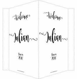 Geboortebord/ raambord | Welcome (handlettering)| naam | zwart