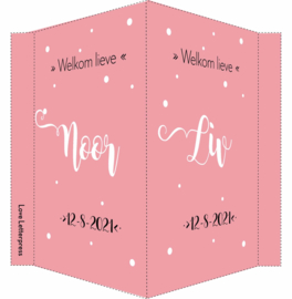 Geboortebord/ raambord | tweeling |  handlettering | dochters |  roze vanaf