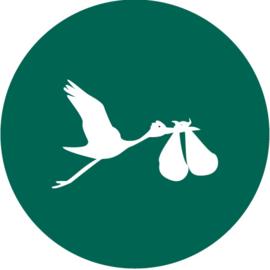 Geboorte sluitzegels | Tweeling | Ooievaar dicht | donkergroen emerald