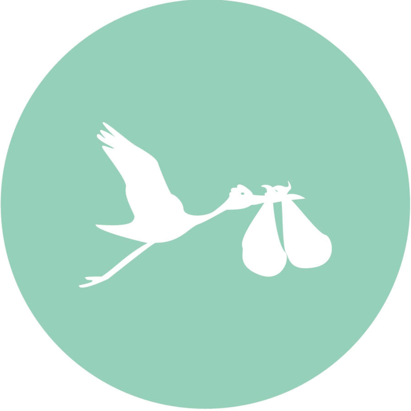 Geboorte sluitzegels | Tweeling | Ooievaar dicht | mint