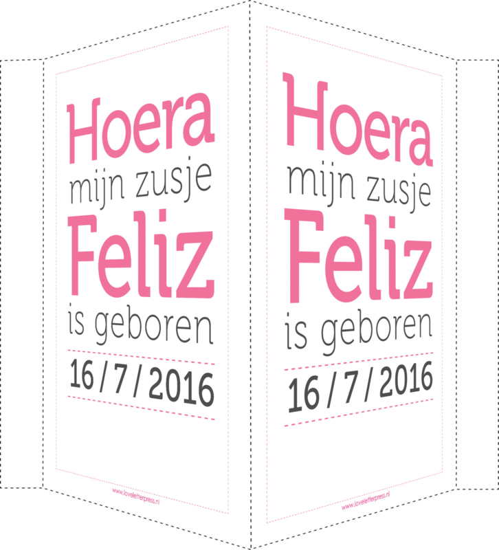 Geboortebord/ raambord   Hoera mijn zusje is geboren   naam   roze/grijs vanaf