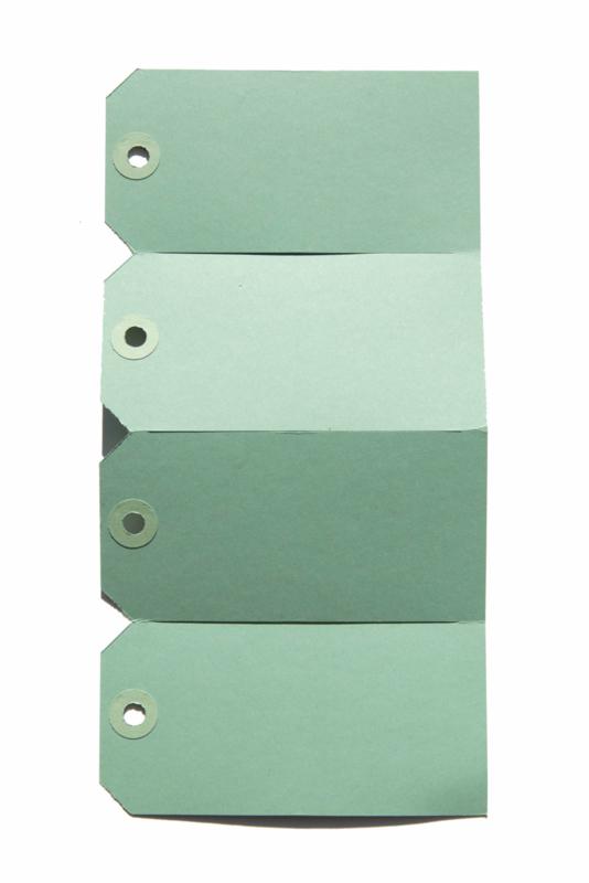 Labels mint | 60 x 120 mm