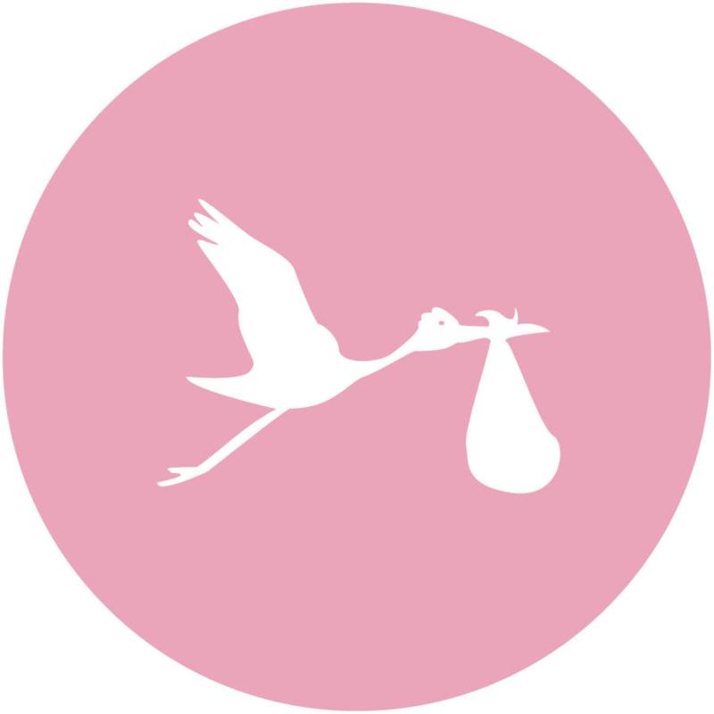 Geboorte sluitzegels | hart | licht roze