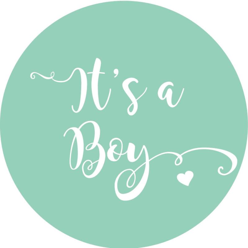 Geboorte sluitzegels | It's a boy | mint