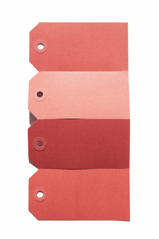 Labels rood | 60 x 120 mm