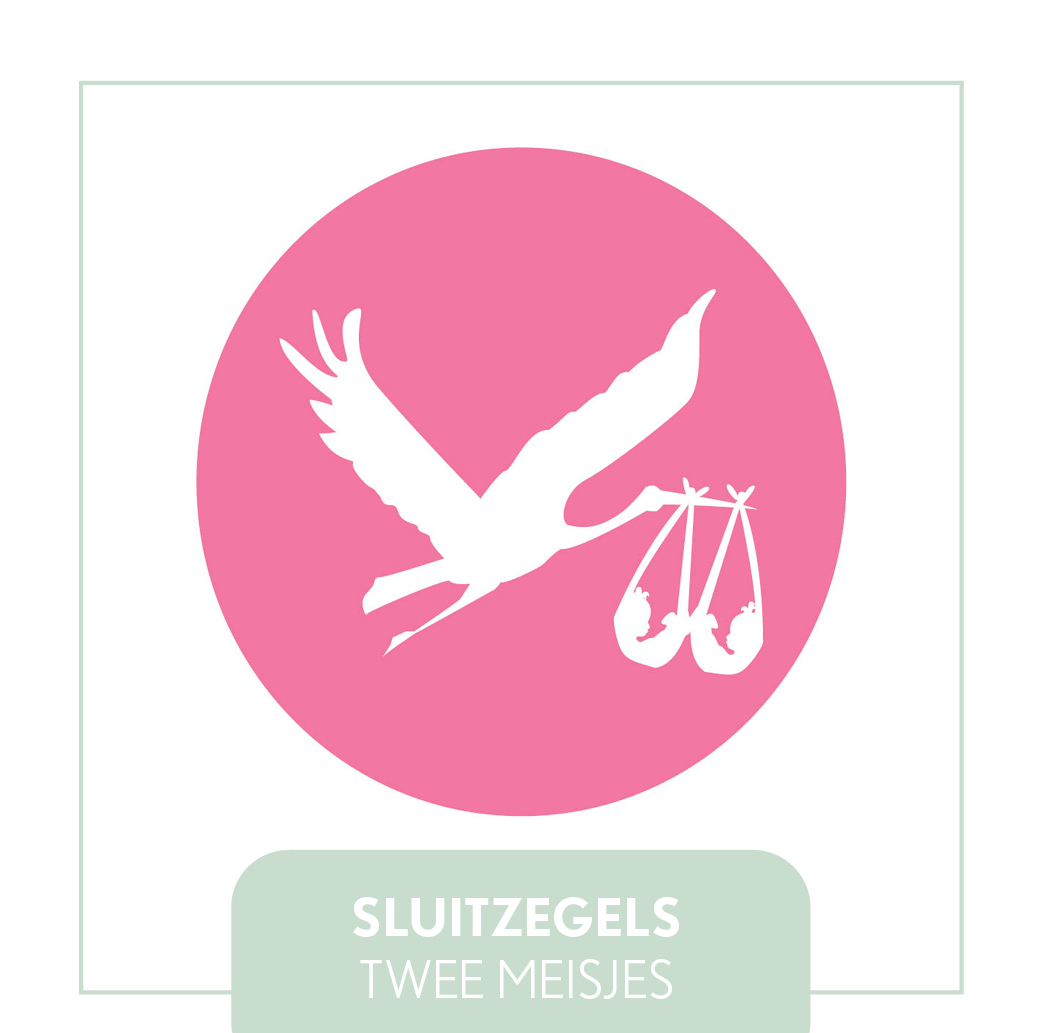 TWEELING MEISJE GEBOORTE STICKERS/ZEGELS HIP MODERN ORGINEEL GOEDKOOP