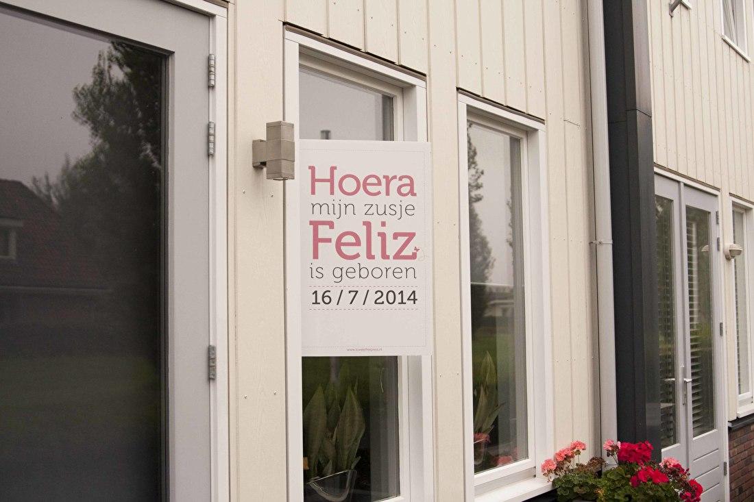 raambord geboorte geboortebord Hoera mijn zusje is geboren tekst