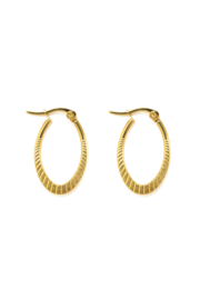 Golden special oval hoops