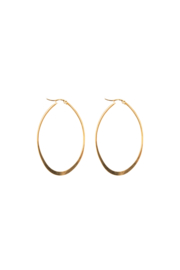 Golden oval hoops