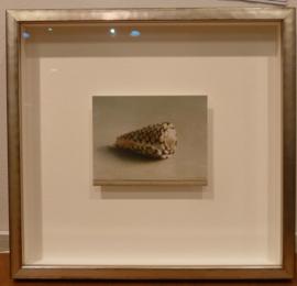 """Henk Helmantel, """"rembrandts schelpje"""""""