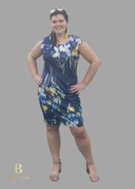 BWF Blauwe jurk met print