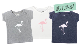Baby De Luxe: Flamingo T-shirt - White