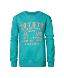 Petrol: Sweater coyote - Zee groen