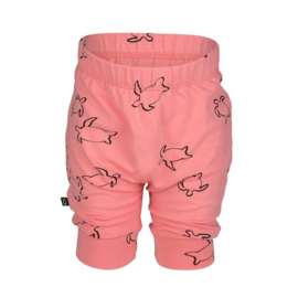 Noeser: Pelle Balloon Shorts Turtle AOP Coral