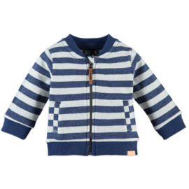 Babyface: Jongens Vest - Dutch Blue
