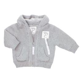 Baby deLuxe: Capuchonvest grijs met rits