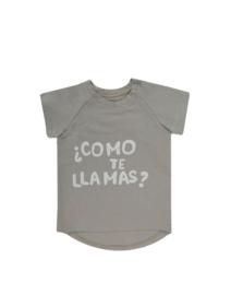 Dear Sophie: Como te Llama taupe t-shirt