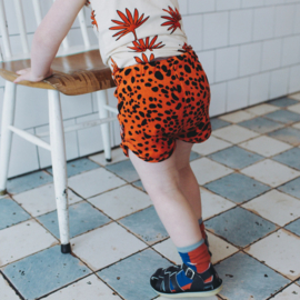 CarlijnQ: Spotted Animal Shorts