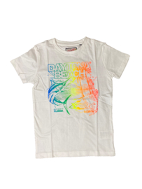 Petrol: Jongens T-shirt - Wit