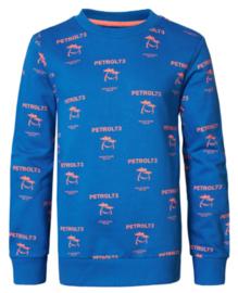 Petrol: Sweater met palmbomen en logo - blauw