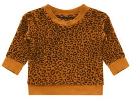 House of Jamie: Crewneck sweater - Golden Brown Leopard