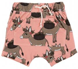 Dear Sophie: Donkey - pink shorts