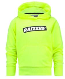 Raizzed: Hoodie New Orleans - Lime
