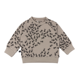 Noeser: Hilke Sweater ants/ mieren