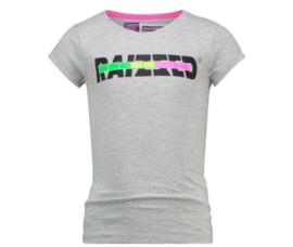 Raizzed: T-shirt Venice - Grey Melee