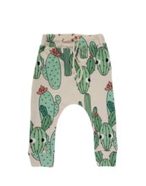 Dear Sophie: Green Cactus Pants
