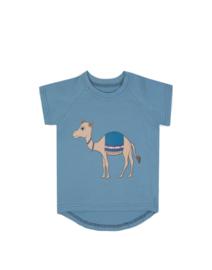 Dear Sophie: Camel blue T-shirt