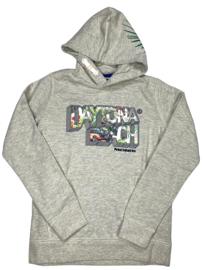 Petrol: Jongens  Hoodie light grey