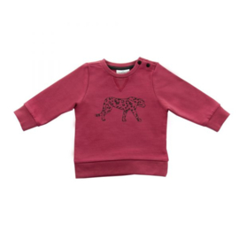 Jollein: Sweater leopard maroon red
