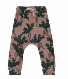 Dear Sophie: Parsley Brown jogging pants