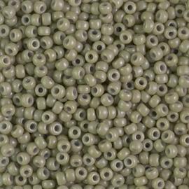 Miyuki rocailles 11/0 4474 Cactus Duracoat Opaque (10 gram)