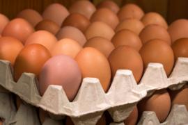 10 eieren