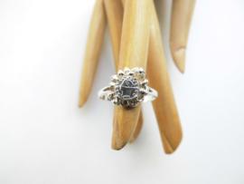 Zilveren muntje ring.