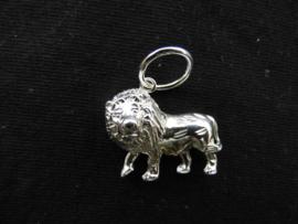 Zilveren sterrenbeeld leeuw hanger.